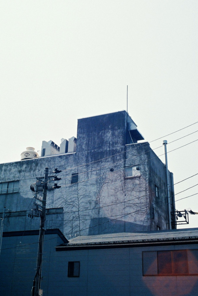 untitled_images2_28