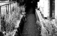 竹内いつか 写真#1617